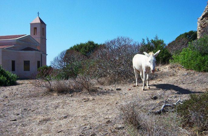 Le foto di Biagio Giordano, Sardegna e Spotorno