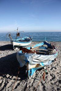 Noli barche